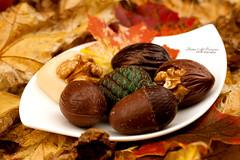 Yummy Autumn chocolate (Fatin Al Tamimi) Tags: autumn nature chocolate autumncolors