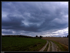Plancenoit (chando*) Tags: road sky clouds champs ciel waterloo fields nuages chemin brabantwallon plancenoit