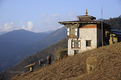 Back Home (karmajigme) Tags: color nikon asia village bhutan himalaya bhoutan d700