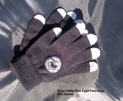 "Branded gloves with ""smart phone tips"" $10 • <a style=""font-size:0.8em;"" href=""https://www.flickr.com/photos/51193137@N08/10467100274/"" target=""_blank"">View on Flickr</a>"