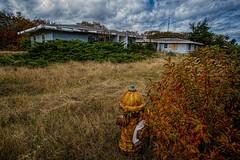 Abandoned, Cape Cod, MA (Edwaste) Tags: abandoned landscape landscapes capecod sony spooky derelict asbestos capecodnationalseashore a850 suburbdecay northtruroairforcestation edwaste northtruroafs decayingsuburb edsteinerts
