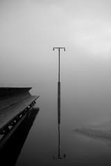 Silence (Lars Glorvigen) Tags: morning winter light bw sculpture white lake fish black reflection art ice beach wet water norway 35mm poster morninglight nikon sigma hamar mjsa moringlight d700