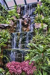 Waterfall (pawansw) Tags: nature waterfall flowersplants butterflygardenchangiairport