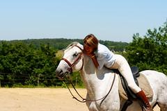 Lipizzan 4 (TATIUMZI) Tags: france cheval sony sigma dordogne alpha 700 aquitaine lipizzan 7020028 cavalière montpeyroux alpha700 sonyalpha700