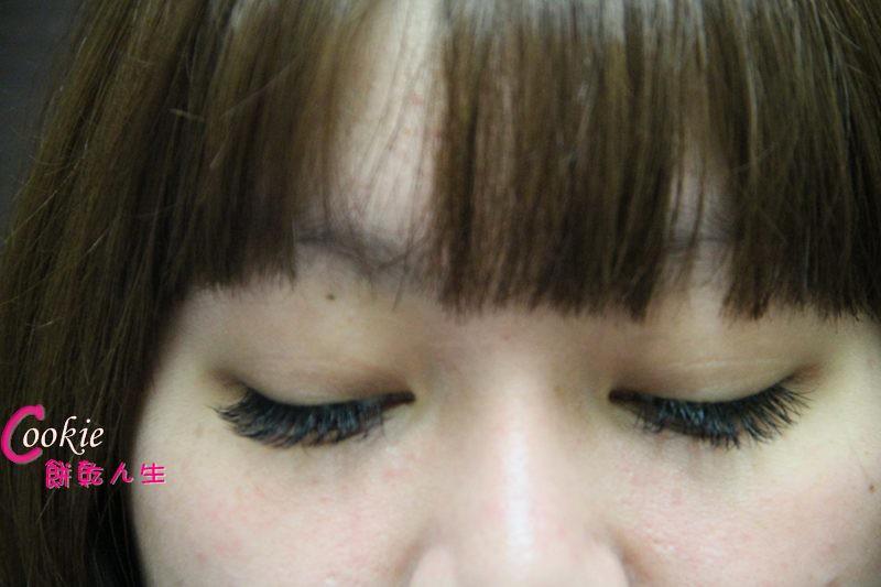 睫毛 (9)