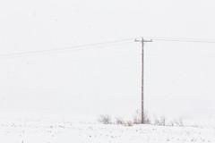 The last snowstorm of 2013... (bill.d) Tags: winter usa snow storm field michigan unitedstatesofamerica overcast lunchhour lunchtime kalamazoo 11thstreet oshtemo