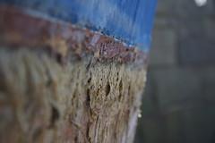 Seaweed (Nathaniel_Jones14) Tags: sea seaweed boat bokeh dry crispy hull guernsey