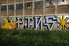 PINS (Alex Ellison) Tags: urban streetart yellow graffiti bigbird pins roller graff eastlondon paulinsect