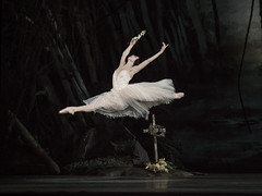 Giselle available to pre-order on DVD and Blu-Ray