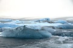 The unpronouncable Jkulsrln glacial lake (SuperGregN) Tags: winter snow beach blacksand iceland glacier icebergs jkulsrln glaciallake