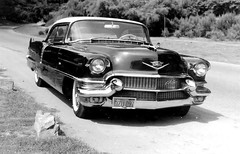 1956 Cadillac 62 Coupe DeVille (Railroad Jack) Tags: