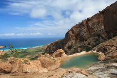 Homhil - Socotra (lercherl) Tags: de island tur yemen gira viaggi vi visite turu yaman excurso socotra tra turn jemen turas homhil     ekskursioon sokotra  kiertue pelancongan      tre         turneju  ferina