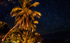 Cielo nocturno en Bahia Drake. Costa Rica 08. (dgr) Tags: blue sky orange beach azul night stars landscape noche nikon costarica playa paisaje corcovado cielo palmtree estrellas naranja palmera d3 centralamerica bahiadrake dgr americacentral