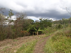 P5120326