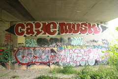 caile, musk hasl, wtf, rkoil (Spaces and Places) Tags: rip zee doc jdi dcb