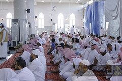29 (Abdulbari Al-Muzaini) Tags: