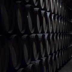 barrels (Cosimo Matteini) Tags: cosimomatteini ep5 olympus pen m43 mft mzuiko45mmf18 eltziego spain barrels marqusderiscal
