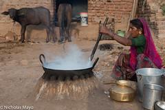 Bharwad Women Making Mawa (Nick Mayo/RemoteAsiaPhoto) Tags: wok hearth cow headscarf gujarat bracelet earring india muli