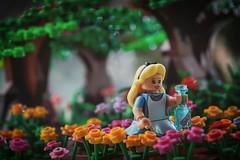 Alice (Dudu Simas) Tags: lego legophotography legomoc mini toyphotography toy aliceinwonderland