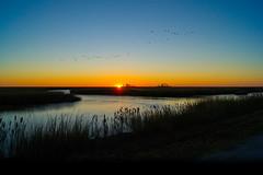 sunrise (Black Hound) Tags: sony a500 sunrise bombayhooknwr bombayhook