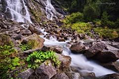 Fall to Stream (Luca Enrico Photography) Tags: trentino dolomiti valrendena valgenova ruscello stream cascatenardis longexposure hdr waterfall nardis river montagna mountain