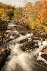 Flowing (Karen_Chappell) Tags: river nature nd110 longexposure renniesriver stjohns canada atlanticcanada newfoundland nfld orange trees fall autumn october water rocks city green landscape scenery scenic