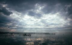 Brighter (Josevi11) Tags: light sky water cloudy clouds birds albufera