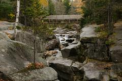DSC_0149 (Michael P Bartlett) Tags: water streams rocks waterfall trees mtwashington newhampshire