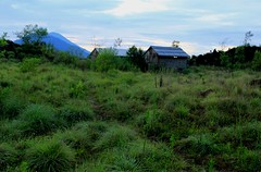 Mount Batur Hike 1 (richardha101) Tags: bali indonesia mountain mount batur hiking hike asia travel wanderlust nature outdoor