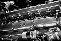 Jaguar engine (Guillaume Tassart) Tags: jaguar engine xk etype