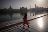 Sikhs (Leonid Plotkin) Tags: amritsar asia goldentemple india punjab religion religious sikh sikhism