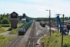 DSC07992 (Jani Järviluoto) Tags: kiuruvesi t t4443 dv12 dv122549 dv122630