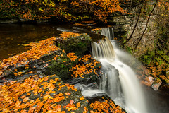 Autumn (fiona couser) Tags: waterfall autumn lynn glen dalry ayrshire