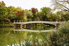 NY Central Park Bow Bridge (Ben-ah) Tags: newyork ny centralpark park bowbridge bridge water victorian castiron calvertvaux jacobwreymould bethesdaterrace manhattan cherryhill