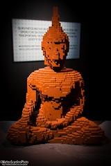 The Art Of The Brick (9) (Matteo Scardino) Tags: theartofthebrick tha art brick milano fabbricadelvapore museo lego mattoncini arancio arancione orange budda