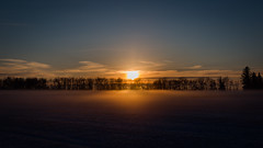 Setting Sun (wrighteye) Tags: sun setting landscape fog sky trees headland alberta canada nature winter 9 7040mm