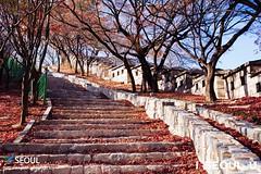 Seoul: Seongbuk-dong (Seoul Korea) Tags: iseoulu canoneos6d flickrseoul korea seoul seoulkorea sigma2470mmf28exdghsm asia asian capital city kpop korean photo photograph seongbukdong seongbukgu southkorea 대한민국 서울 한국 kr