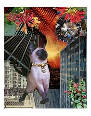 Aries - StarCat (tjager) Tags: astrology zodiac starcat livingferal cat catlover siamese kitten firesign diamond aries collage art analog