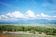 Saika No Sato (Gai) Tags:    nakafurano hokkaido japan   summer      blue sky  cloud  flower  plant  mountain  green  field  country  sunny  lavender