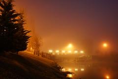 DSC08503 (cemilÖzenli) Tags: eskişehir fener adası gaga yaya köprüsü porsuk sonbahar pedestrian bridge sunrise autumn