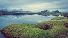Calm (Geinis) Tags: iceland nature grass green snfellsnes sony sonya6000 ilce6000 water reflection mountain mountains snow sky