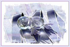 Rhapsody in Blue (Elisafox22 still Off more than On!) Tags: elisafox22 sony ilca77m2 100mmf28 macro macrolens telemacro simplepleasures blue ribbon agapanthus flowers flower crystal crystalballs spheres sunshine textures textured clippingsmask tabletop stilllife border elisaliddell©2016 untouchabledream extraordinarilyimpressive
