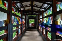 Tunnel Vision (@mons.always) Tags: travel bridge nikon asia bhutan tunnel monastery prayerflags d90 18105mm tangomonastery lpgate cherimountain