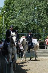 DSC04599 (Schep_B) Tags: fun hcm gents wedstrijd paarden muiderberg goededoel paardensport sistershope hippischcentrummuiderberg rvanydale mannenles lesuurkampioenschap
