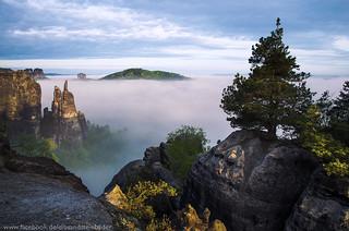 Nebelmeer an der Brosinnadel