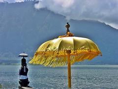 Bali - Pura Ulun Danu Bratan - Lakeside Parasols (zorro1945) Tags: indonesia indonesie asia bali danubratan lake parasol umbrella yellow silk flickrtravelaward lakebratan