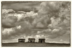 Three (gordeau) Tags: bw clouds three gordon alberta thumbsup cloudscape sheds ashby flickrchallengegroup flickrchallengewinner thechallengefactory thepinnaclehof gordeau tphofweek216