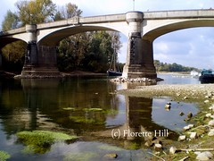 Niedrigwasser toter Rheinarm bei Bad Honnef ( the-best-is-yet-to-come ) Tags: reflections shades schatten spiegelung mirroring reflektionen digitalcameraclub abigfave homersiliad thesuperbmasterpiece mirrorser travelsofhomerodyssey
