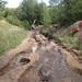 South Mesa Trailhead, looking toward bridge over Boulder Creek