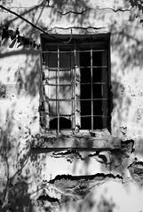 WP_20130914_14_29_40_Pro__highreshd (Antti Tassberg) Tags: travel shadow blackandwhite bw window monochrome wall nokia bars mediterranean kos greece 1020 carlzeiss egeo varjo lumia aegeansea ikkuna csfb elláda kreikka seinä ελλάδα välimeri pureview kalteri iphoneography lumia1020 aigeianmeri kosonsail